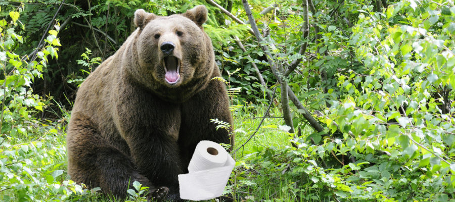 Bear Shitting in Woods