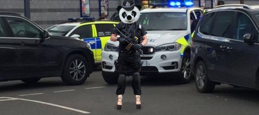 Armed Police Panda Wearing High Heels