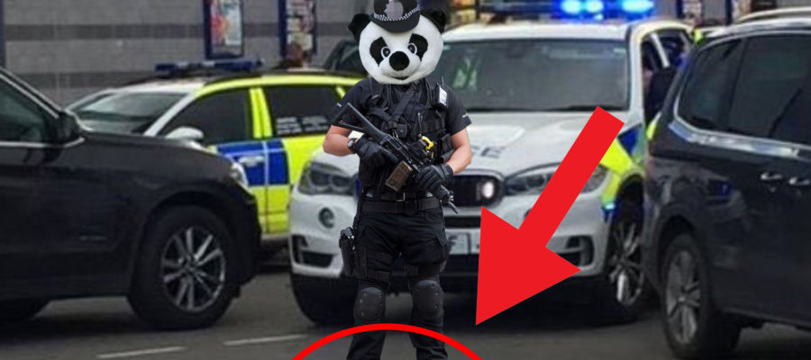 Armed Police Panda Wearing High Heels Cropped