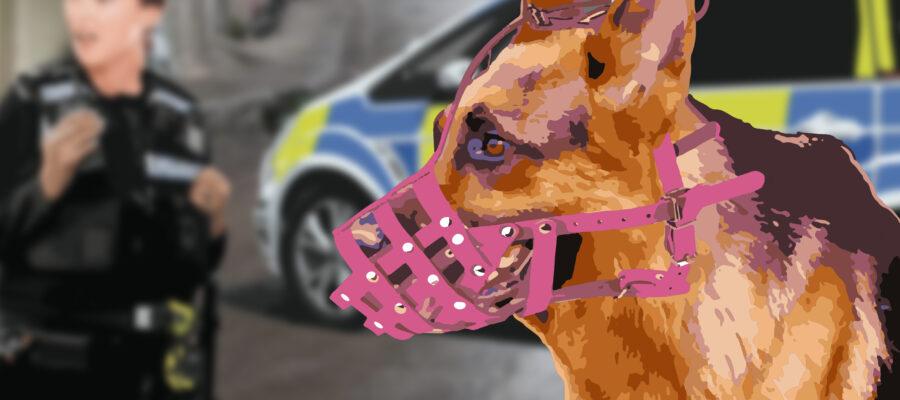 Muzzled Police Dog